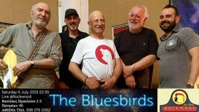 The Bluesbirds @Rockwood 6/7/2019