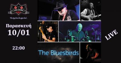 The Bluesbirds Live 10/1
